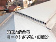 repair_image06